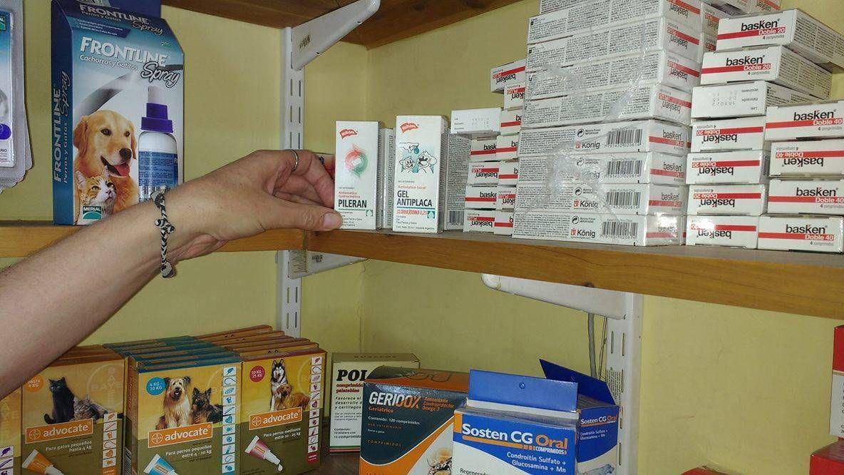 Buscan evitar venta de medicamentos para animales en locales sin veterinarios