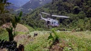 EEUU propició plantaciones de coca