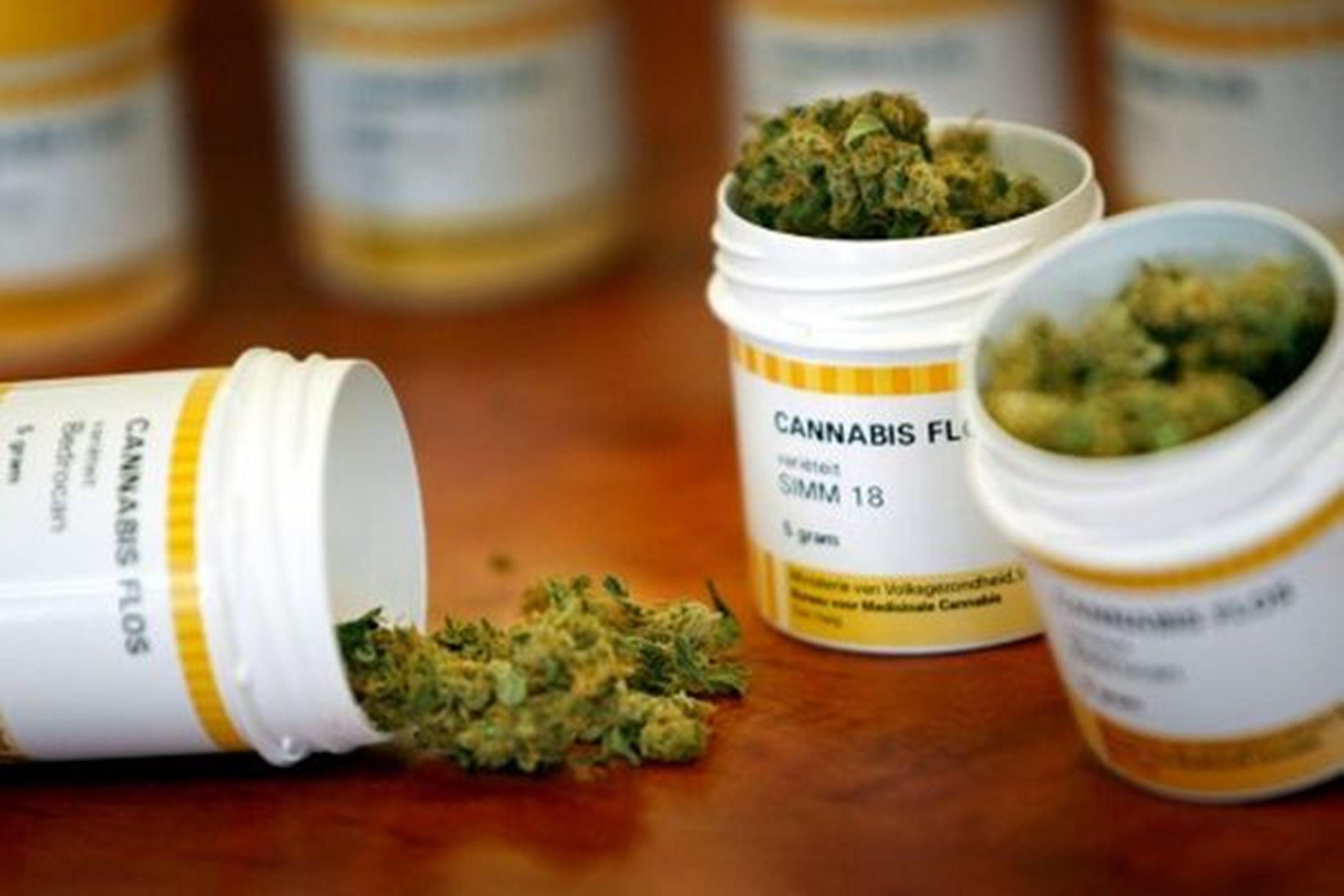 Resultado de imagen para cannabis medicinal