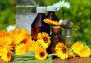 La caléndula una gran aliada para la regeneración de la piel