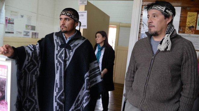 """Mapuches tomaron Senasa de Bariloche por el secuestro de """"medicinas ancestrales"""". El país. La Nueva. Bahía Blanca"""