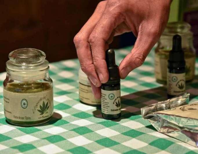 Reglamentan ley de uso de Cannabis medicinal