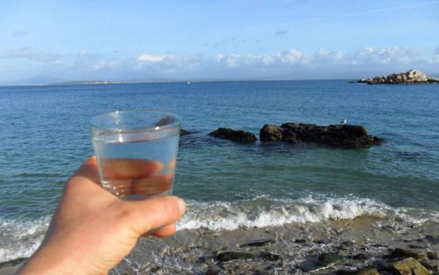 ¿Por qué los laboratorios medicinales no quieren que tomemos agua de mar?
