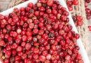 Extractos de pimienta rosa contra las superbacterias