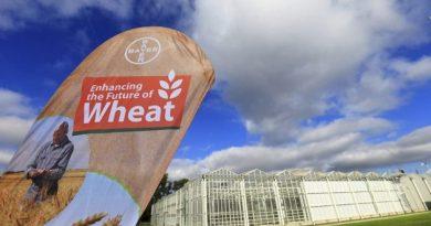 Visto bueno a la compra de Monsanto por parte de Bayer