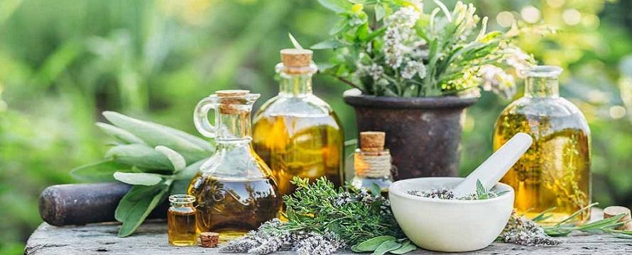 Invima presentó el listado de plantas medicinales aceptadas con ...